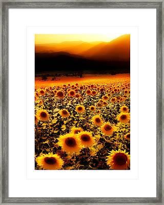 Andalucian Suns Framed Print by Mal Bray