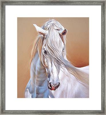 Andalusian - Detail Framed Print