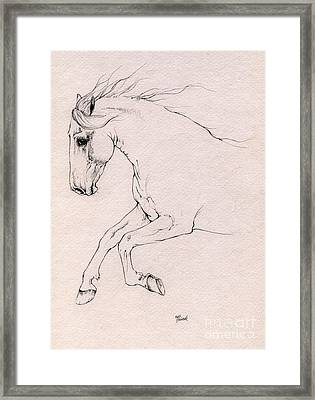 Andalusian Horse Drawing 2015 12 03 Framed Print