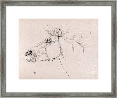 Andalusian Horse Drawing 2015 12 0a3 Framed Print