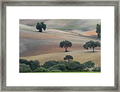 Andalusian Landscape Framed Print by Heiko Koehrer-Wagner