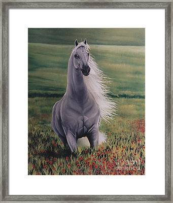 Andalusian Spirit Framed Print by Louise Green