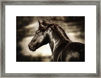 Andalusian Spirit Framed Print by Nick Sokoloff