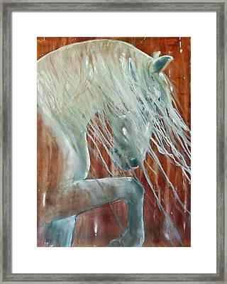 Andalusian Stallion Less Blue Framed Print