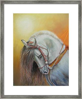 Andaluz Framed Print by Ceci Watson