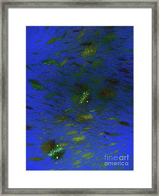 Andee Design Abstract 102 2017 Framed Print