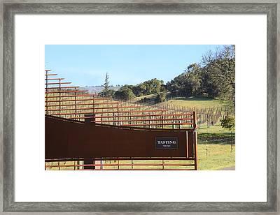 Anderson Valley Vineyard Framed Print
