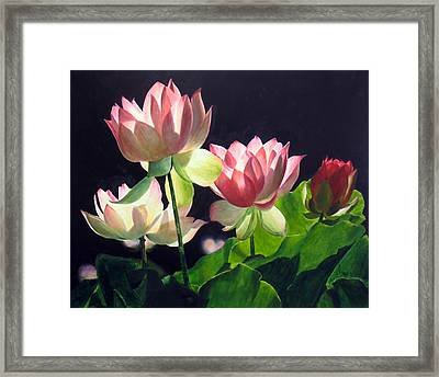 Andrea's Lillies Framed Print