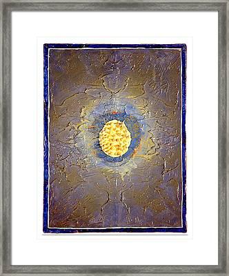 Anemone Framed Print by Howard Goldberg
