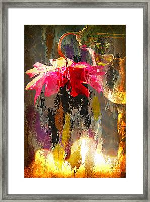 Anemone Monday Framed Print
