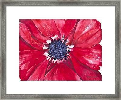 Anemone Framed Print by Patricia Allingham Carlson
