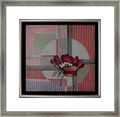Anemonie Framed Print by Shirley Heyn
