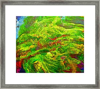 Anew Framed Print by Michael Durst