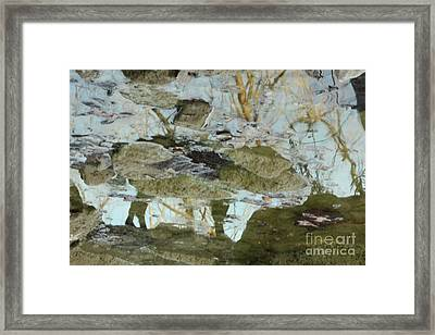 Angel Disguised As Coyote Framed Print