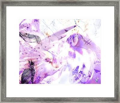 Angel Eyes Framed Print by Ken Walker