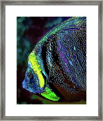 Angel Face 3 Framed Print