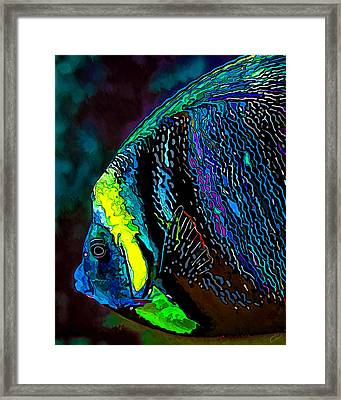 Angel Face 3 Framed Print