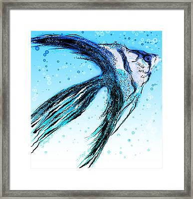 Angel Fish Art Framed Print
