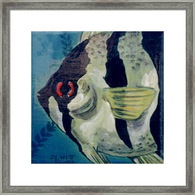 Angel Fish Framed Print by Dy Witt