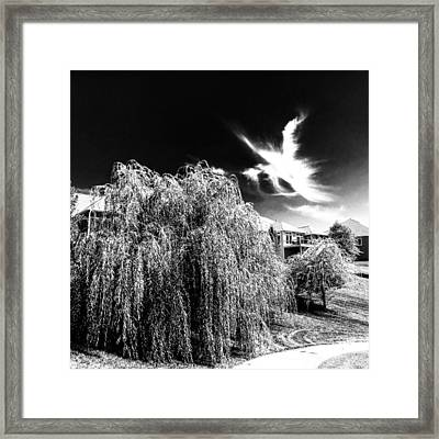 Angel In The Sky Framed Print