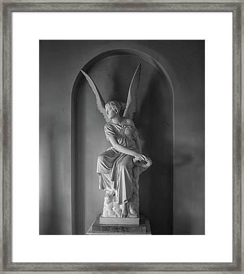 Angel Framed Print by Martin Newman