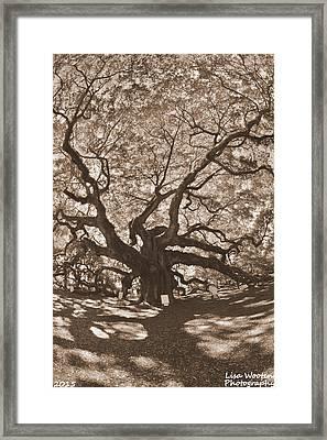 Angel Oak Johns Island Sepia Framed Print by Lisa Wooten