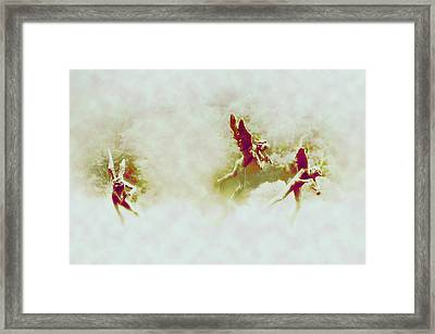 Angel Song Framed Print by Bill Cannon