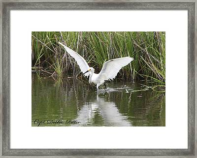 Angel Wings Framed Print