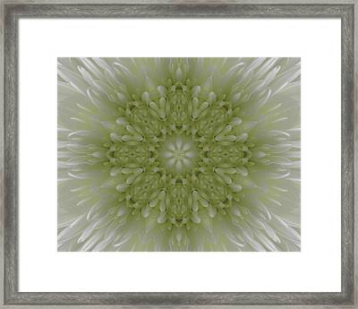 Angel Wings Framed Print by Michele Caporaso
