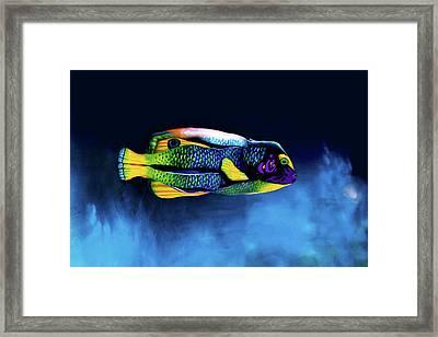 Angelfish Bodypainting Illusion Framed Print