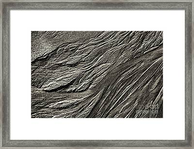 Angels Hair Framed Print by Tim Gainey