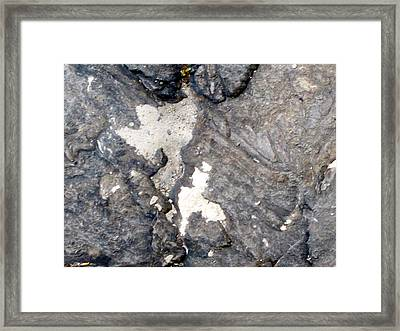 Angels In Central Park Framed Print