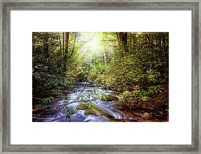 Angels In The Forest Framed Print by Debra and Dave Vanderlaan