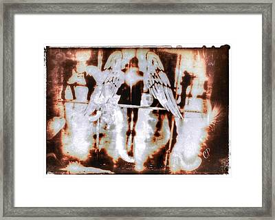 Angels In The Mirror Framed Print