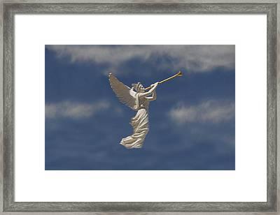 Angels Trumpet Framed Print by David Lee Thompson