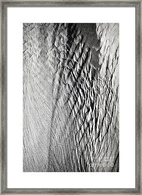 Angels Wings Framed Print by Tim Gainey