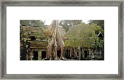 Angkor -- Ruins And Roots Framed Print by Linda Parker