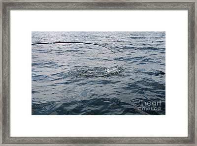Angler's Anticipation Framed Print by Skip Willits