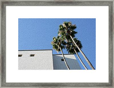 Angles And 3 Palm Tress Framed Print