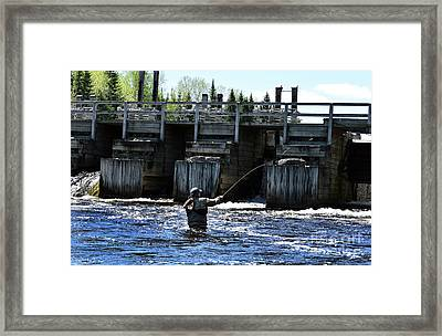 Angling Framed Print by Skip Willits