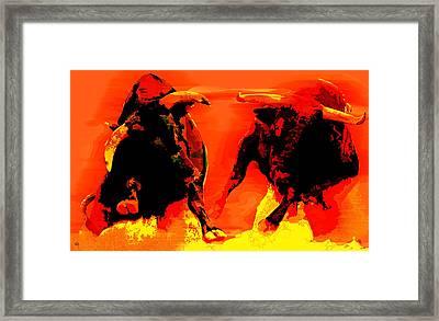 Angry Bulls Framed Print