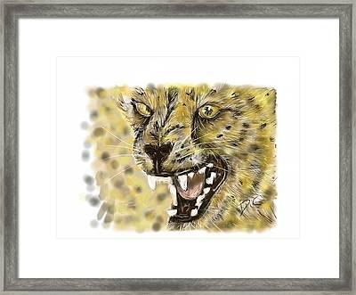 Angry Cheetah Framed Print