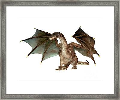 Angry Dragon Framed Print by Corey Ford