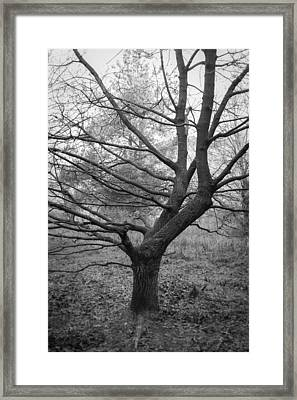 Angular Framed Print