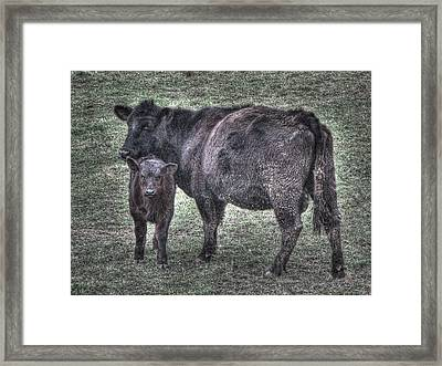 Angus We Have Heard On High Framed Print