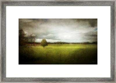 Angustown Pasture Framed Print by Cynthia Lassiter