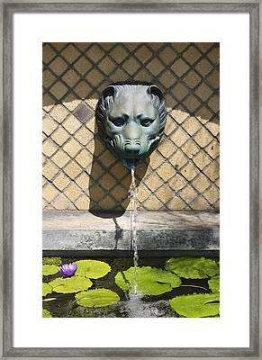 Animal Fountain Head Framed Print by Teresa Mucha