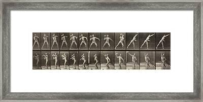 Animal Locomotion Framed Print