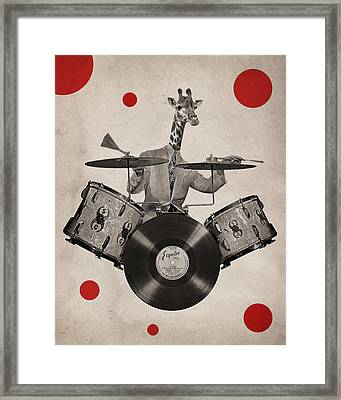 Animal19 Framed Print by Francois Brumas