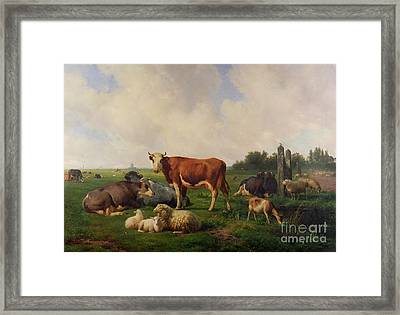 Animals Grazing In A Meadow  Framed Print by Hendrikus van de Sende Baachyssun